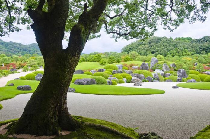 Hostels in Japan for Digital Nomads