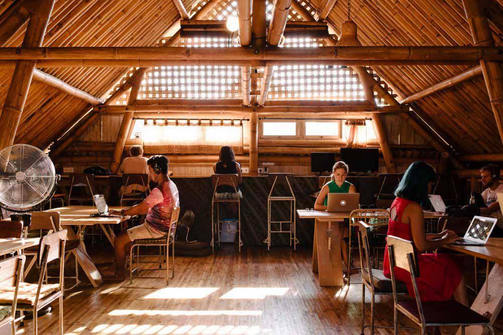 wifi tribe coworking program