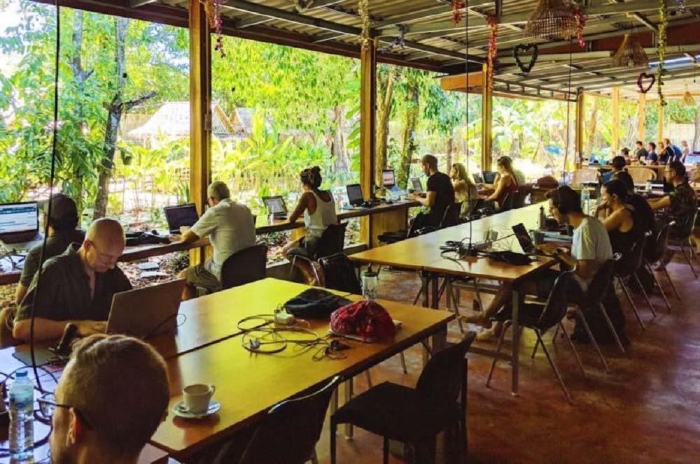 hacker paradise coworking program